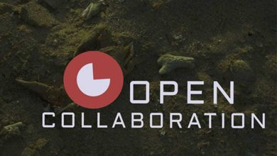 Photo of 5 Reasons Why Small Business Embrace Open Source